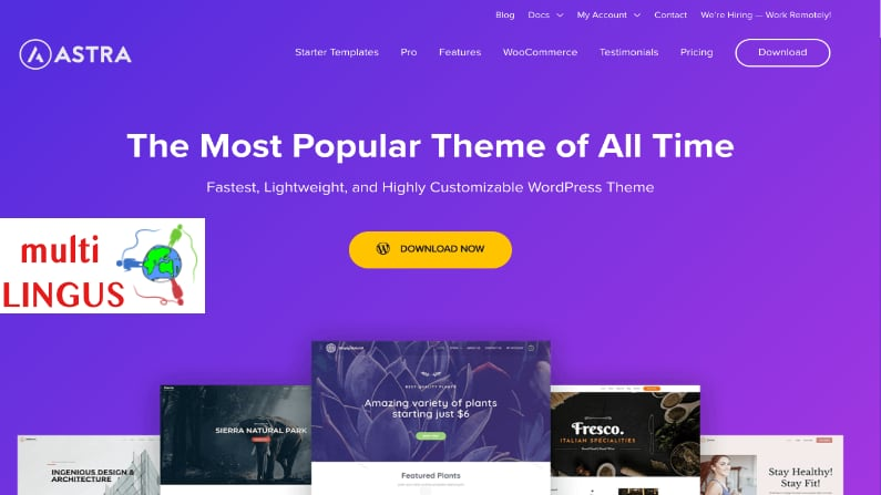 WordPress Astra theme review